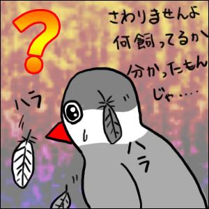 2012_0510_03.jpg